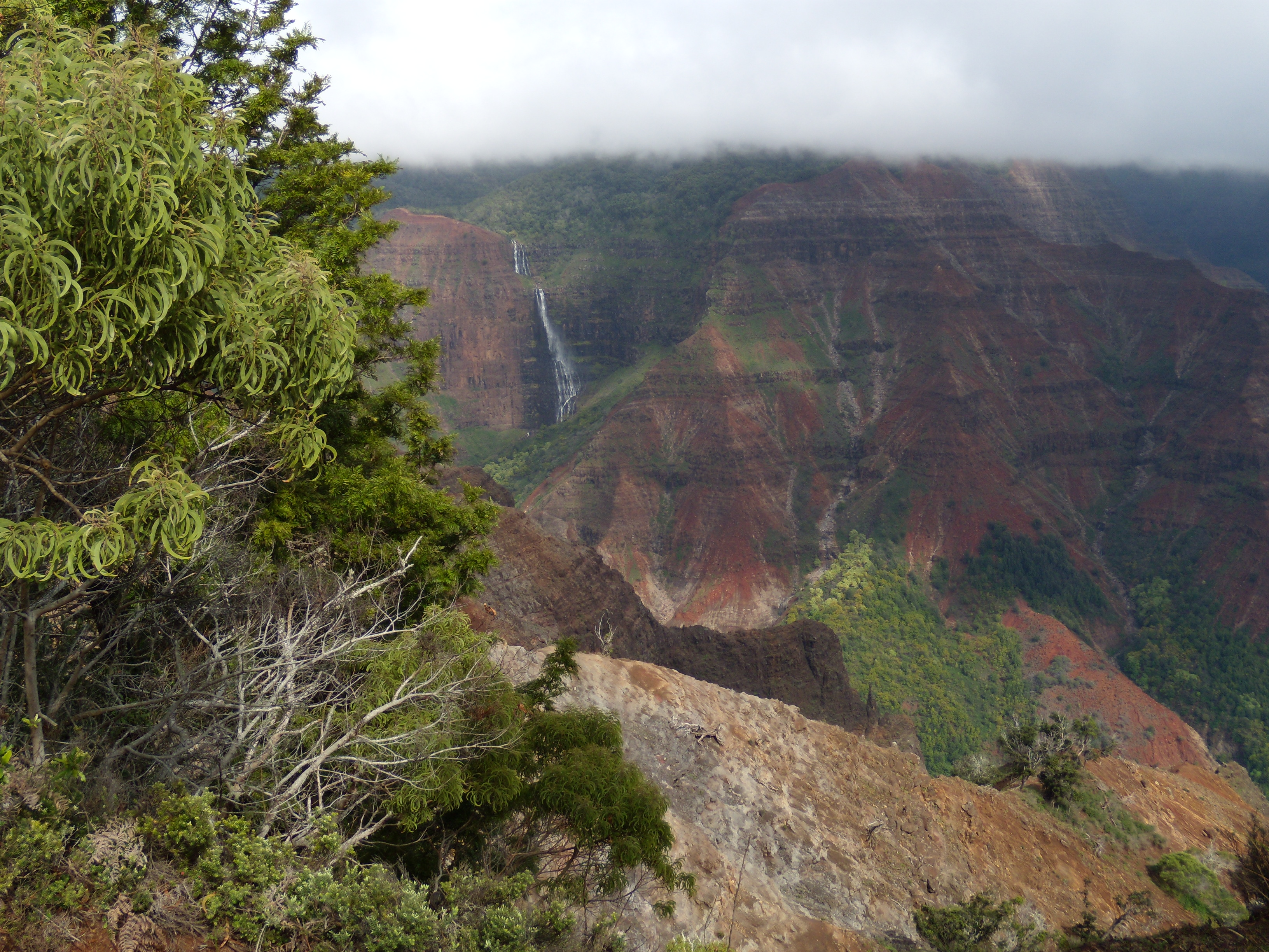 Kokee State Park, Mountains, Kalalau Valley, Waimea Canyon